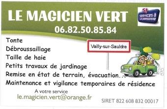 le-magicien-vert
